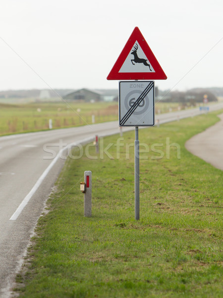 Traffic sign for deer pass Stock photo © michaklootwijk