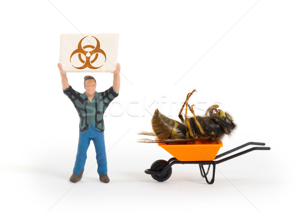 Miniature man with a sign - dead wasp Stock photo © michaklootwijk