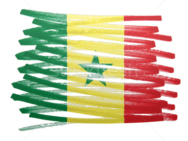 Vlag illustratie Senegal pen business verf Stockfoto © michaklootwijk