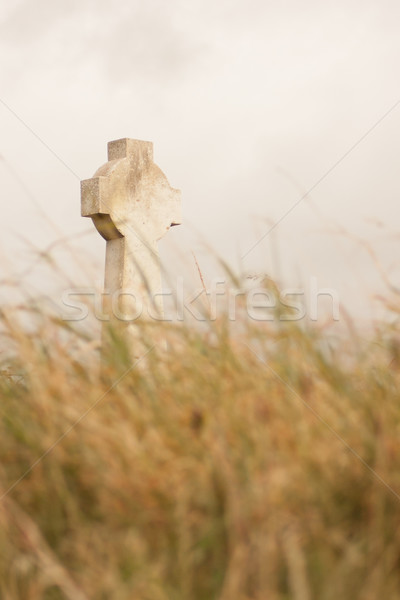 A gravestone on a Irish graveyard Stock photo © michaklootwijk