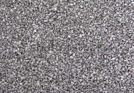 Ground stone, grey Stock photo © michaklootwijk