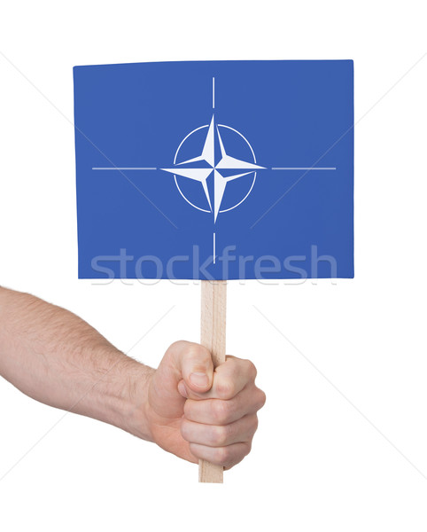 Mano piccolo carta bandiera isolato Foto d'archivio © michaklootwijk