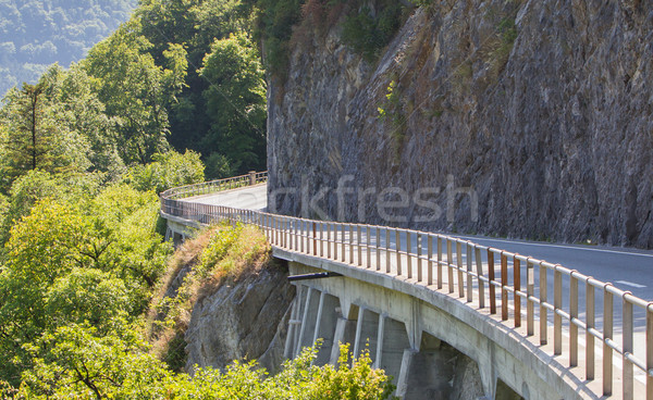 Dağ yol İsviçre dik doğa yaz Stok fotoğraf © michaklootwijk