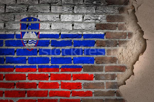 Sötét téglafal tapasz Szlovénia textúra zászló Stock fotó © michaklootwijk