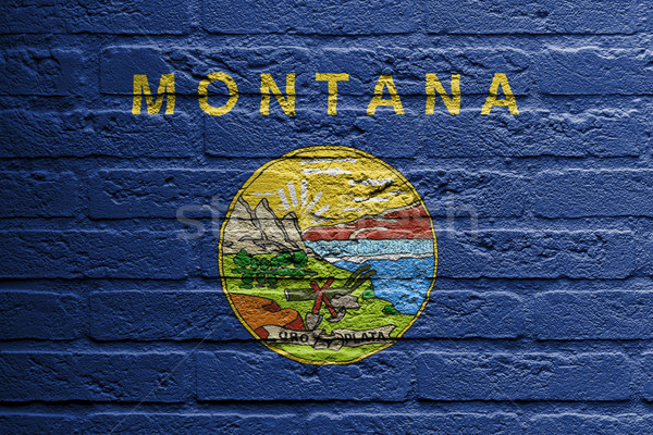 Brick wall with a painting of a flag, Montana Stock photo © michaklootwijk