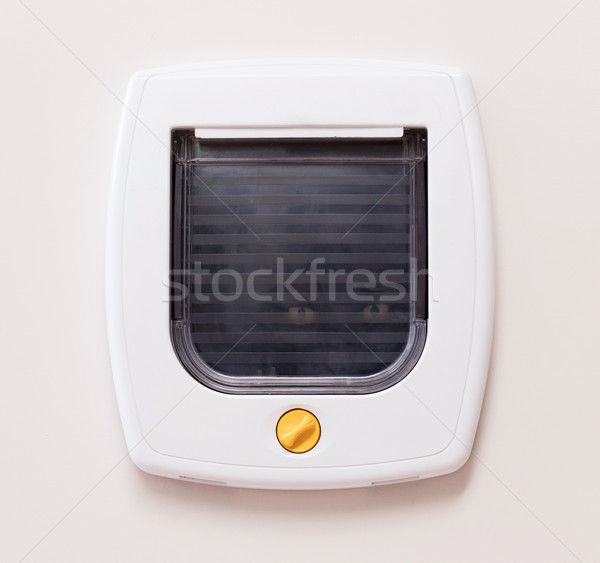 Inside view of a regular white cat flap, cat comming through Stock photo © michaklootwijk