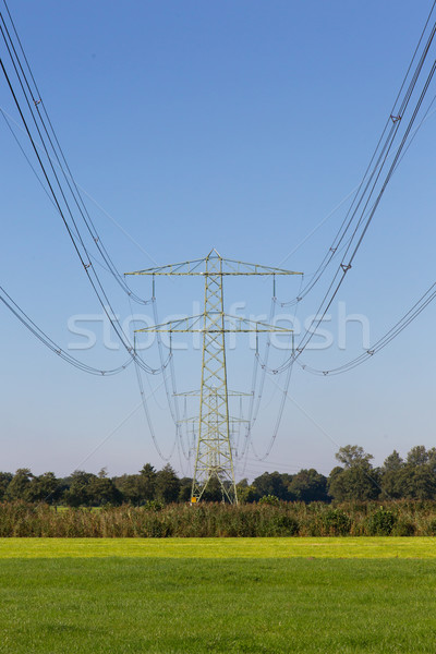 Electric powerlines across a beautiful field Stock photo © michaklootwijk