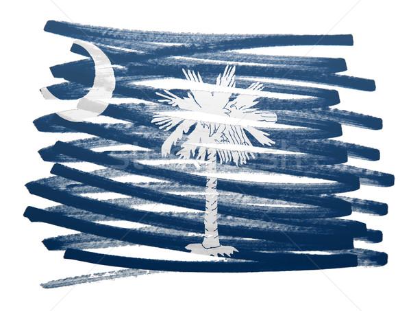 Vlag illustratie South Carolina pen business verf Stockfoto © michaklootwijk