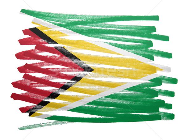 Vlag illustratie Guyana pen business verf Stockfoto © michaklootwijk