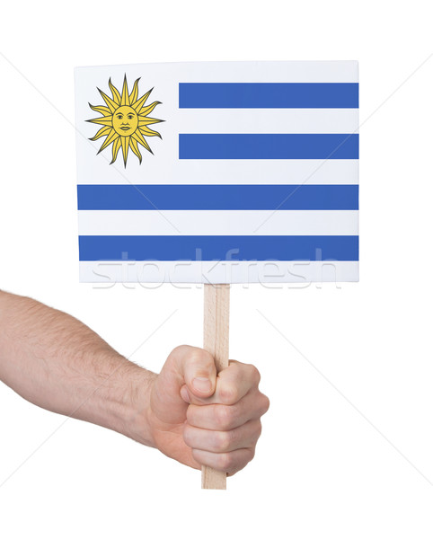 Kéz tart kicsi kártya zászló Uruguay Stock fotó © michaklootwijk