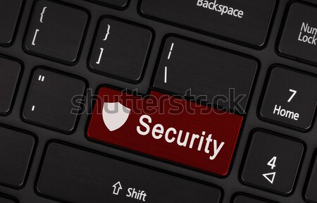 Closeup picture of Security button Stock photo © michaklootwijk