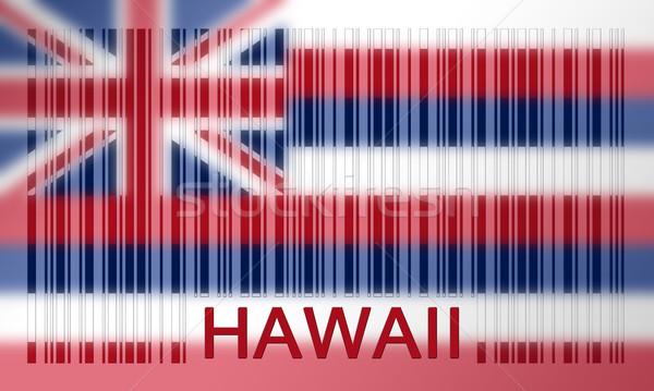 Barcode pavillon Hawaii peint surface design Photo stock © michaklootwijk