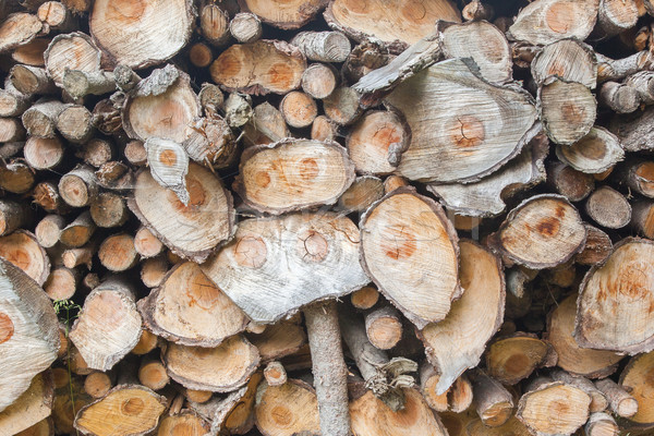 Dry chopped firewood logs  Stock photo © michaklootwijk