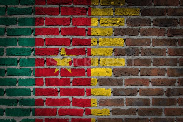 Donkere muur Kameroen textuur vlag geschilderd Stockfoto © michaklootwijk