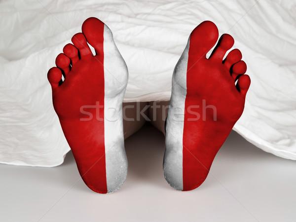 Feet with flag Stock photo © michaklootwijk