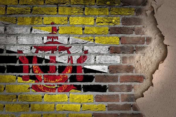 Ciemne murem gipsu Brunei tekstury banderą Zdjęcia stock © michaklootwijk