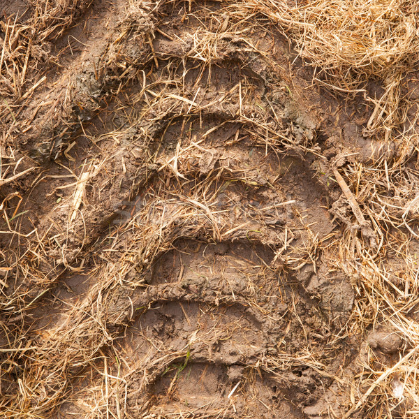 Stock photo: Close-up of a single tire track