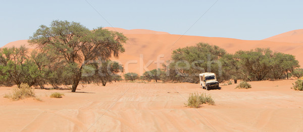 Road in the Sossusvlei, the famous red dunes of Namib desert Stock photo © michaklootwijk