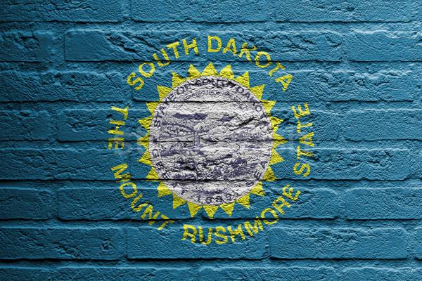 Téglafal festmény zászló Dél-Dakota izolált textúra Stock fotó © michaklootwijk