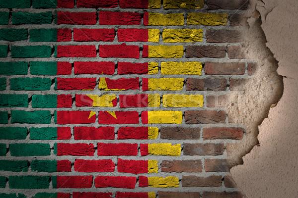 темно кирпичная стена штукатурка Камерун текстуры флаг Сток-фото © michaklootwijk
