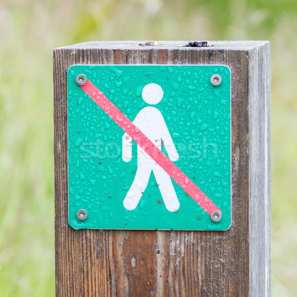 Forbidden to walk over here - Iceland Stock photo © michaklootwijk