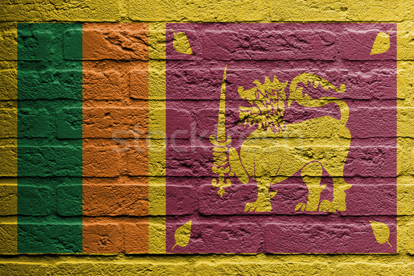 Brick wall with a painting of a flag, Sri Lanka Stock photo © michaklootwijk