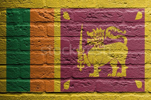 Murem malarstwo banderą Sri Lanka odizolowany tekstury Zdjęcia stock © michaklootwijk