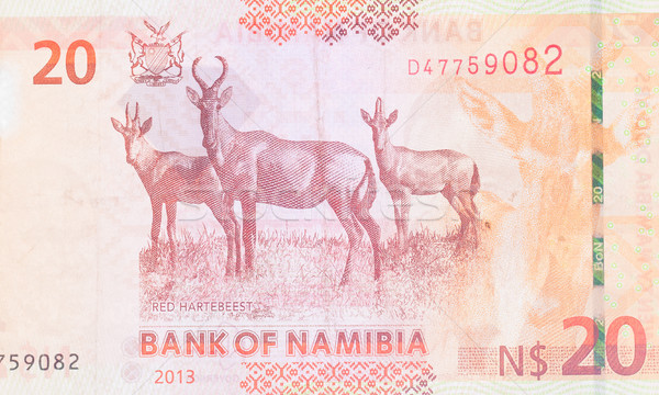 двадцать долларов полный банкнота красный Сток-фото © michaklootwijk