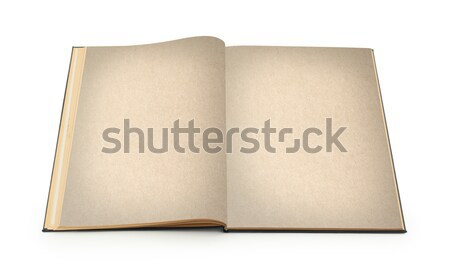 Açmak eski kitap yalıtılmış beyaz kâğıt doku Stok fotoğraf © michaklootwijk
