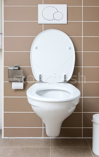 White toilet bowl in the bathroom Stock photo © michaklootwijk