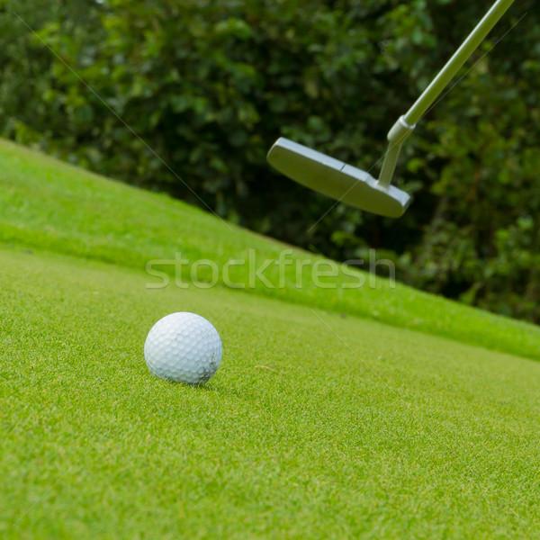 Pallina da golf fronte driver guida erba Foto d'archivio © michaklootwijk