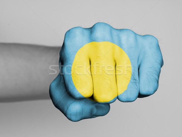 こぶし 男 フラグ パラオ 手 髪 ストックフォト © michaklootwijk