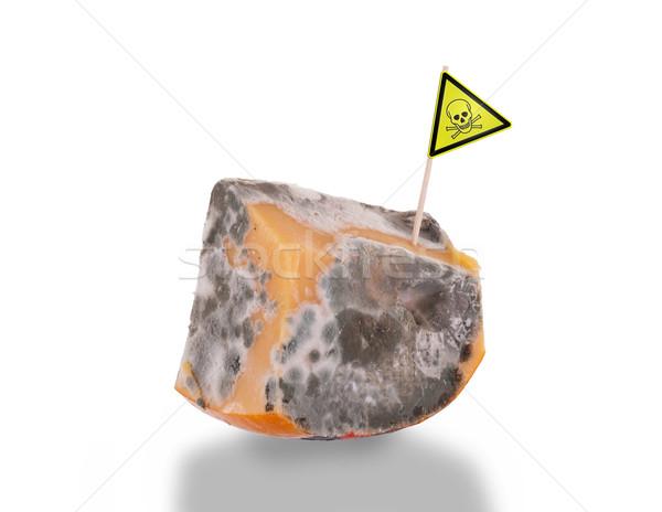 Stuk kaas slechte geïsoleerd witte gif Stockfoto © michaklootwijk