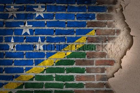 темно кирпичная стена правые Невада текстуры флаг Сток-фото © michaklootwijk