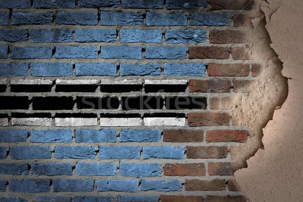 Dark brick wall with plaster - Botswana Stock photo © michaklootwijk