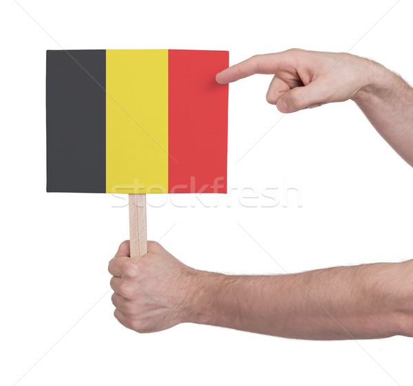 Kéz tart kicsi kártya zászló Belgium Stock fotó © michaklootwijk