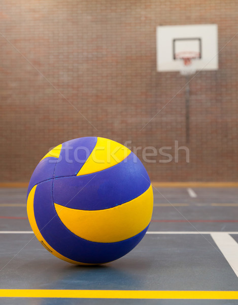 Blue and yellow ball on blue court at break time Stock photo © michaklootwijk