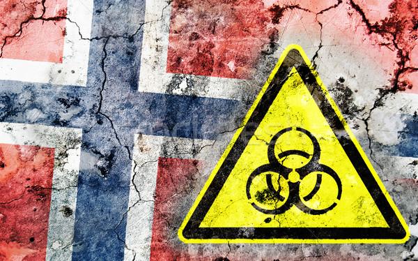 öreg repedt fal bioveszély figyelmeztető jel festett Stock fotó © michaklootwijk