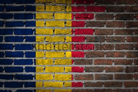 Karanlık tuğla duvar Romanya doku bayrak Stok fotoğraf © michaklootwijk