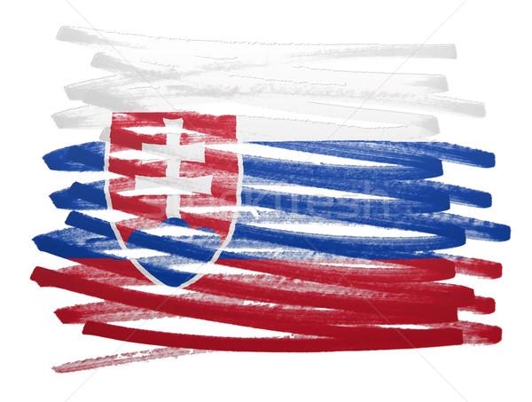 Bandiera illustrazione Slovacchia pen business vernice Foto d'archivio © michaklootwijk