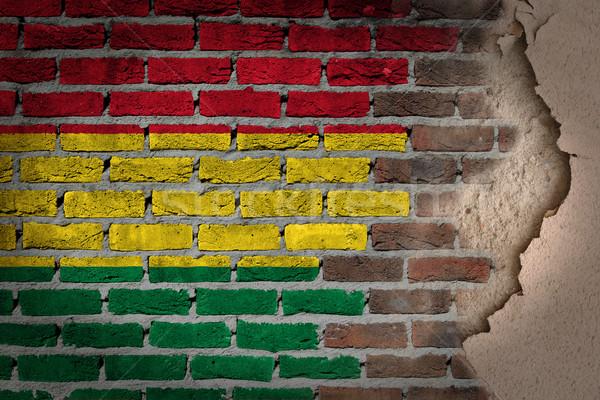 暗い レンガの壁 石膏 ボリビア テクスチャ フラグ ストックフォト © michaklootwijk
