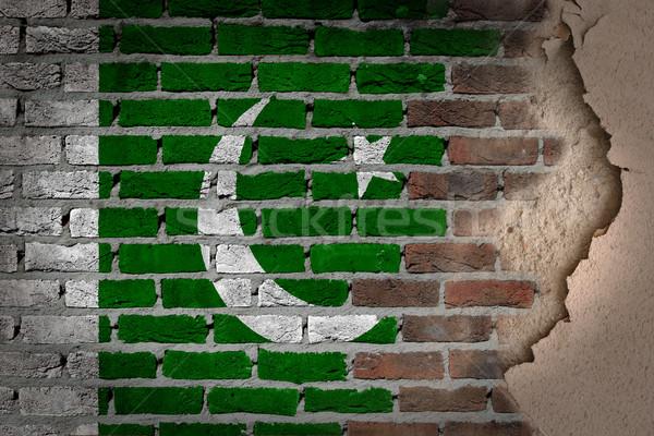 Karanlık tuğla duvar sıva Pakistan doku bayrak Stok fotoğraf © michaklootwijk
