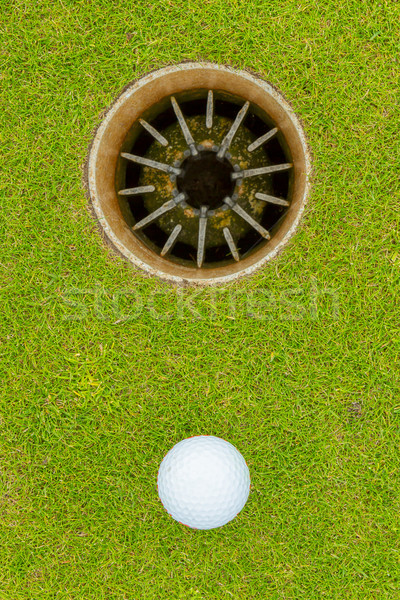 Hole in One - ALMOST!  Stock photo © michaklootwijk