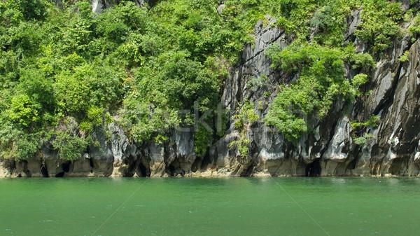 Limestone rocks in Halong Bay, Vietnam Stock photo © michaklootwijk