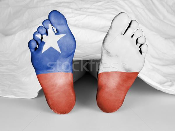 Branco folha bandeira Chile mulher Foto stock © michaklootwijk