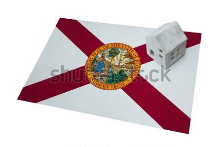 Zászló égő Florida háború válság háttér Stock fotó © michaklootwijk