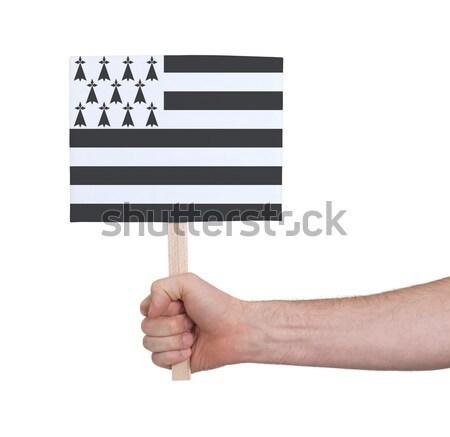 стороны небольшой карт флаг Эстония Сток-фото © michaklootwijk