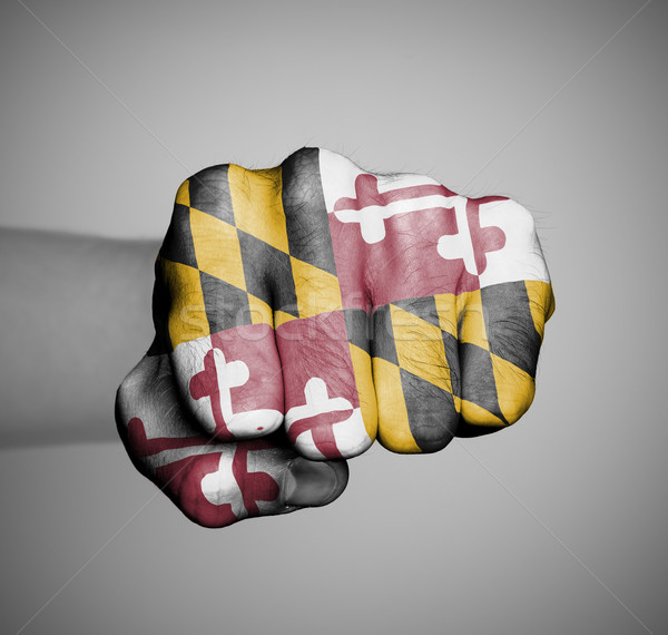 United states, fist with the flag of a state Stock photo © michaklootwijk
