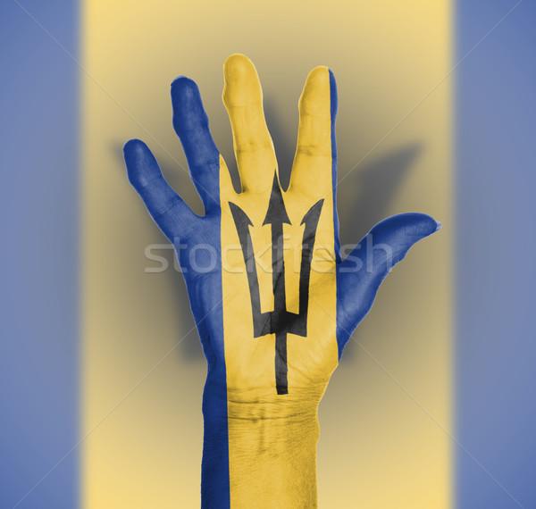 Palm vrouw hand geschilderd vlag Barbados Stockfoto © michaklootwijk