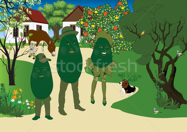 Avokado aile doğa Stok fotoğraf © MichalEyal